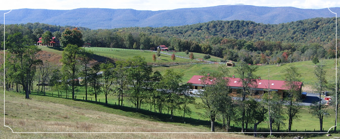 Bull Pasture Mountain Ranch Accommodations